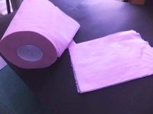 親子で作ろう!春にオススメ手作り「八重桜」の画像1