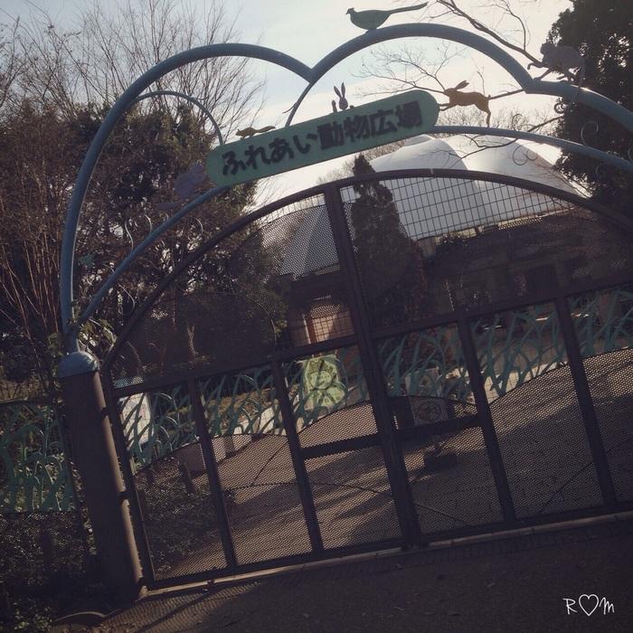 そうだ!親子で公園へ行こう♪相模原麻溝公園の魅力をご紹介!の画像2