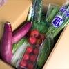 楽しみながら克服!子どもに苦手な野菜を食べさせる方法のタイトル画像