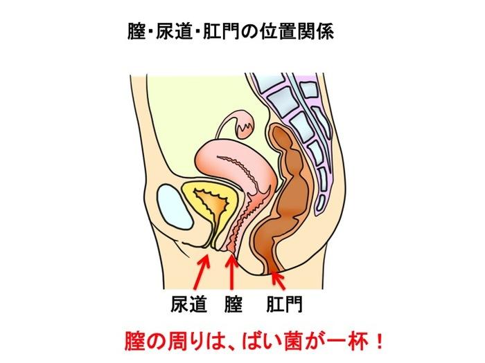 早産予防のために!妊娠前から腟内環境と腸内環境を整えよう!の画像1