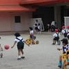現役園長先生が解説!幼稚園と保育園、認定こども園の違いは?のタイトル画像