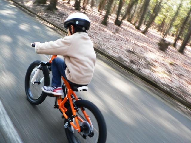 子どもが自転車で事故を起こしたら?もしもの時のために自動車保険をチェックの画像1