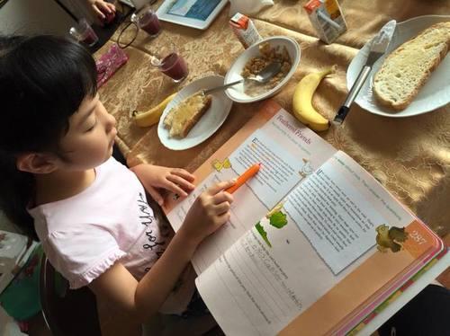 【幼児教育】毎朝10分、自宅で英語学習!おすすめ英語教材の活用法のタイトル画像