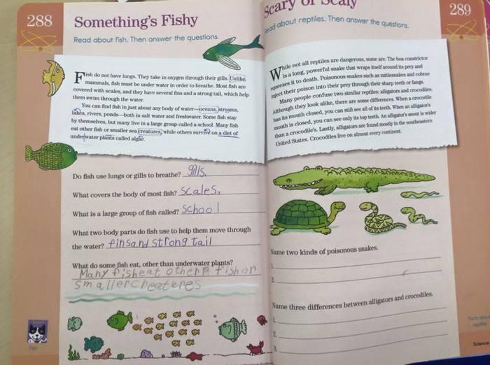 【幼児教育】毎朝10分、自宅で英語学習!おすすめ英語教材の活用法の画像1