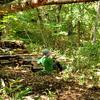 幼稚園・保育園の新しいカタチ、自然の中で泥んこになって遊ぶ、育ちの場「森のようちえん」とは?のタイトル画像