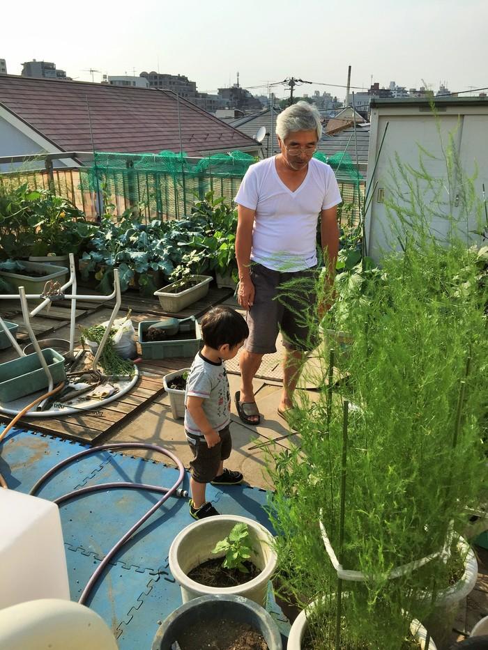 植物を育てることが苦手なママでも大丈夫!知識ゼロから始めるベランダ菜園のススメの画像1