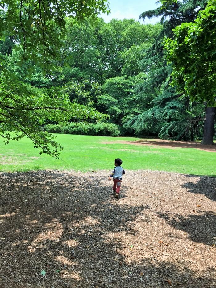 裸足で力いっぱい遊べる新宿御苑!子連れで新宿御苑を楽しむ方法の画像3