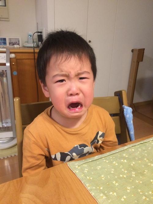 【体験談】イヤイヤ期に悩むパパママへ!私が子どものイヤイヤに上手に対応するためにしている4つの工夫のタイトル画像