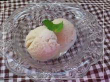 卵を使わないアイスクリーム!卵アレルギーのお子さんも安心して食べれる夏のおやつレシピのタイトル画像