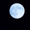 今年の『中秋の名月』は9月27日!お月見を親子で楽しむ方法のタイトル画像