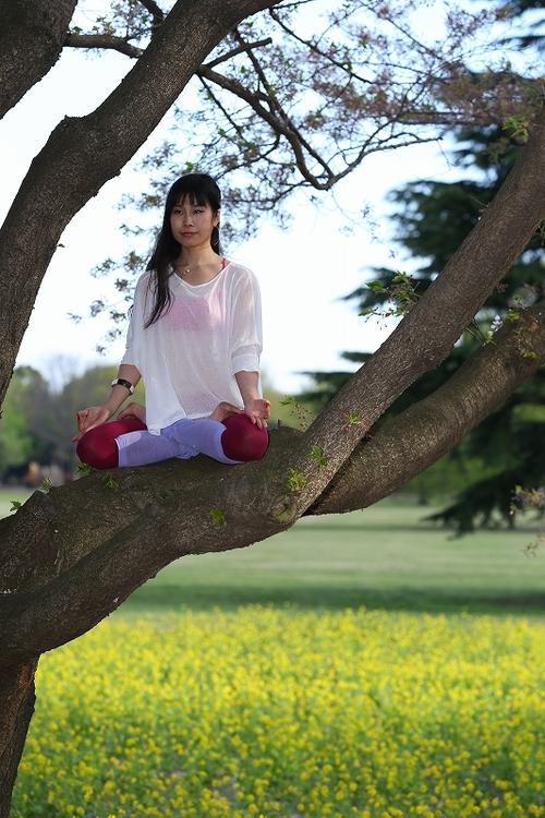 日々感じるストレスを流す「自然瞑想法」とは・・?のタイトル画像
