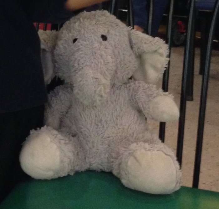 息子がゾウと帰ってきた?アメリカの保育園で体験した不思議な習慣の画像1