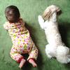赤ちゃんとの出会いに、ジレンマを抱えるペット…赤ちゃんが産まれる前に気をつけたいことのタイトル画像