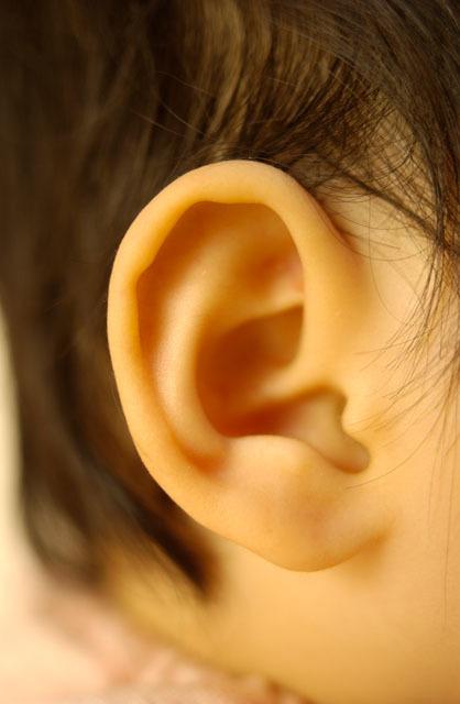 かかりつけの耳鼻科をもっておくと良い理由!混まない耳鼻科の見つけ方、教えますの画像1