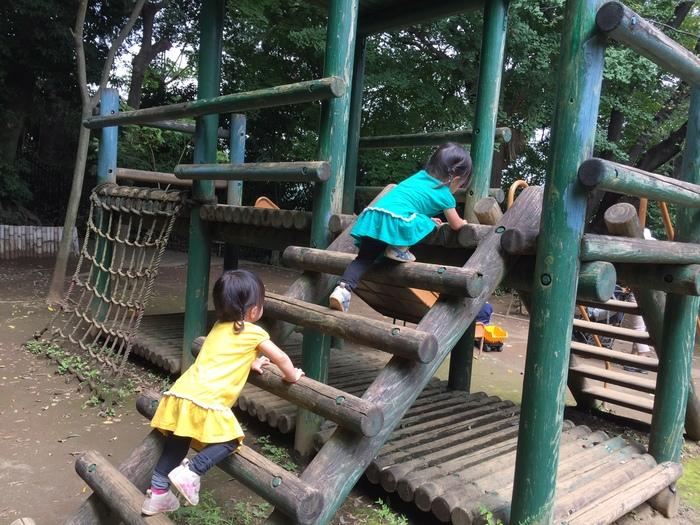 難題!個性の違う双子の幼稚園選びはこう考える!の画像2