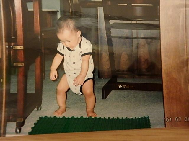生理用ナプキン、人工芝、紙オムツの意外な使い方の画像4