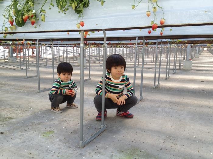 ワンランク上の子どもの写真が撮れるコツ8選の画像34