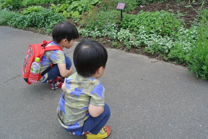 ワンランク上の子どもの写真が撮れるコツ8選の画像24