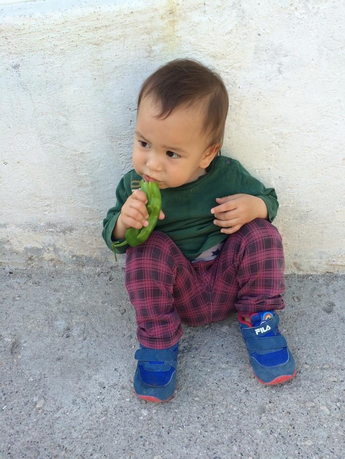 トルコに住む我が子は「野菜好き」!理由を考えると子どもが野菜を食べられるようになる方法が見えてきた!の画像2