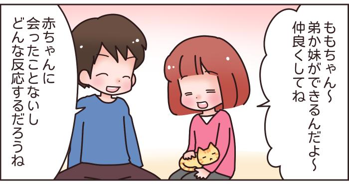 猫と赤ちゃんの同居はNG?妊娠中に、猫を手放せと言われた話…の画像2
