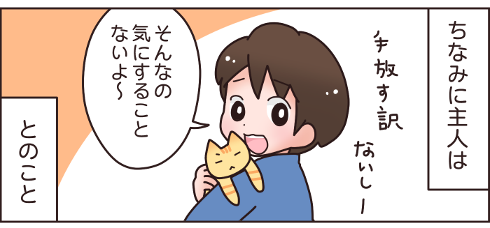 猫と赤ちゃんの同居はNG?妊娠中に、猫を手放せと言われた話…の画像5