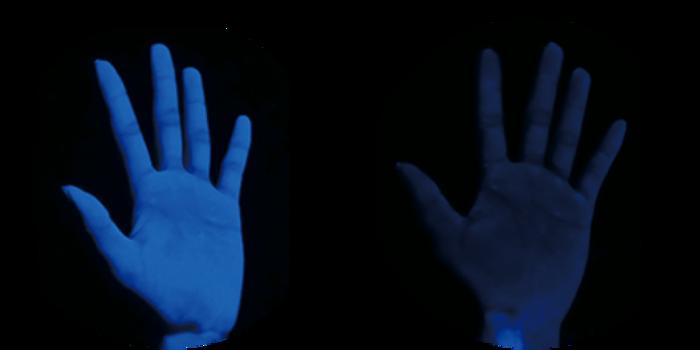 毎日の手洗いで素肌美人に!?洗うたび手の保湿ケアができるハンドウォッシュの秘密の画像5
