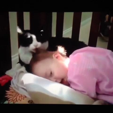 か、かわいすぎる…。疲れた時に観たいオススメ赤ちゃん動画の画像2
