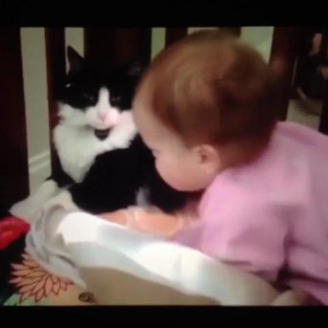 か、かわいすぎる…。疲れた時に観たいオススメ赤ちゃん動画の画像1