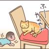 兄弟?友達?息子と猫のわんぱく成長記のタイトル画像