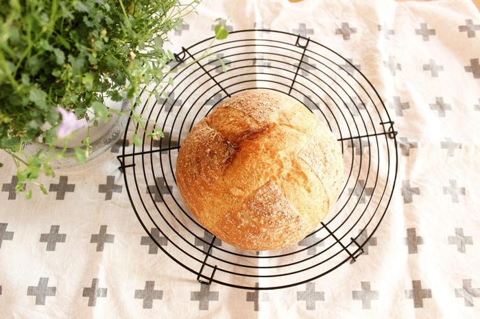 行楽シーズン到来♡バターロールとカンパーニュで見た目も可愛いサンドイッチ弁当をつくろう!の画像1