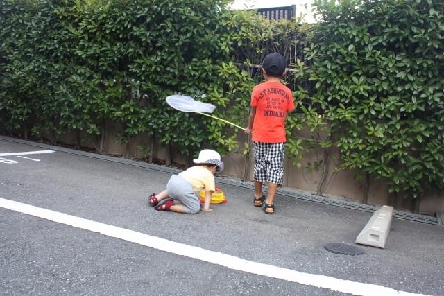 「虫を殺してはいけない」と子どもに言いますか?大人が困る子どもの遊びとの向き合い方の画像3