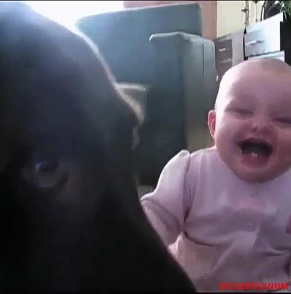 エナジードリンクより効果ありそう!!かわいい赤ちゃん動画まとめ[第1弾]の画像4