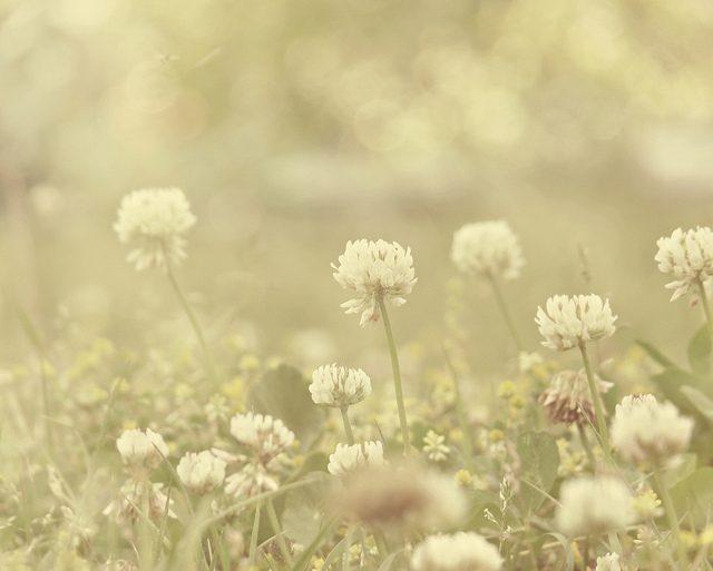 「わたしは絶対に忘れない」人気ブロガ―の詩に、共感の涙。の画像1