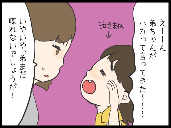 「一緒に遊ぼ!」からのソッコー喧嘩!(泣)お姉ちゃんになりきれない、姉と弟の関係の画像4