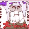 日本の小学校のとある習慣に怯えるベルギー人パパの心配が最高レベル(笑)のタイトル画像
