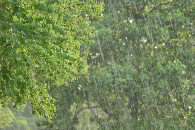 陣痛と眠気、窓の外には強い台風。私の出産奮闘記  <投稿コンテストNo.93>の画像5