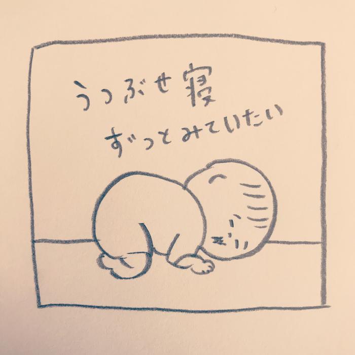 たまらん...!0歳児のとにかく可愛いポイントはココ♡の画像11