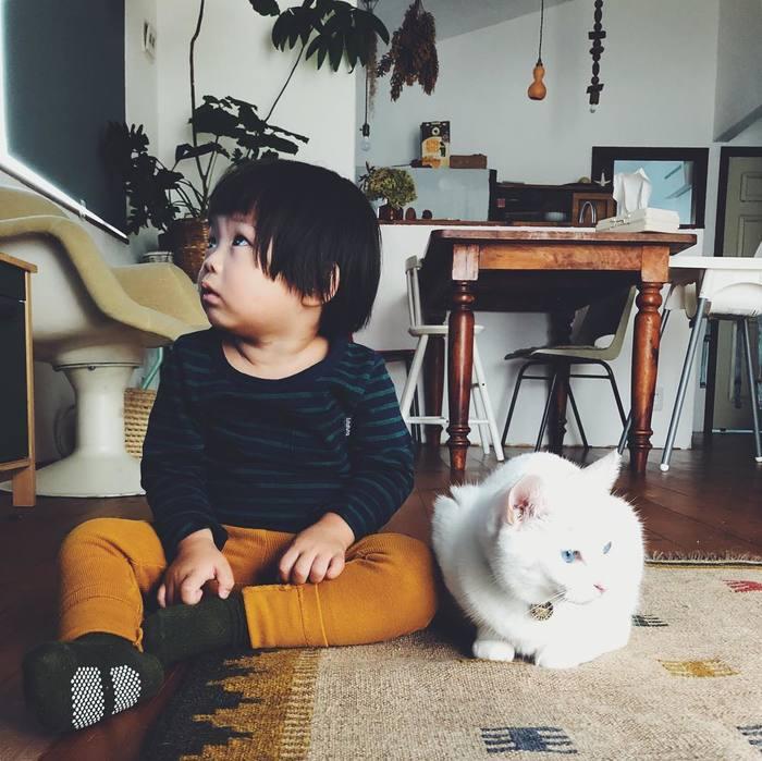 猫とボクはとっても仲良し。だって、赤ちゃんの時から一緒にいるんだもん。の画像8