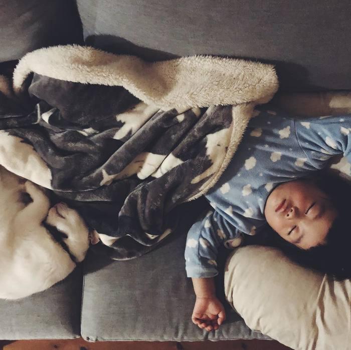 猫とボクはとっても仲良し。だって、赤ちゃんの時から一緒にいるんだもん。の画像14