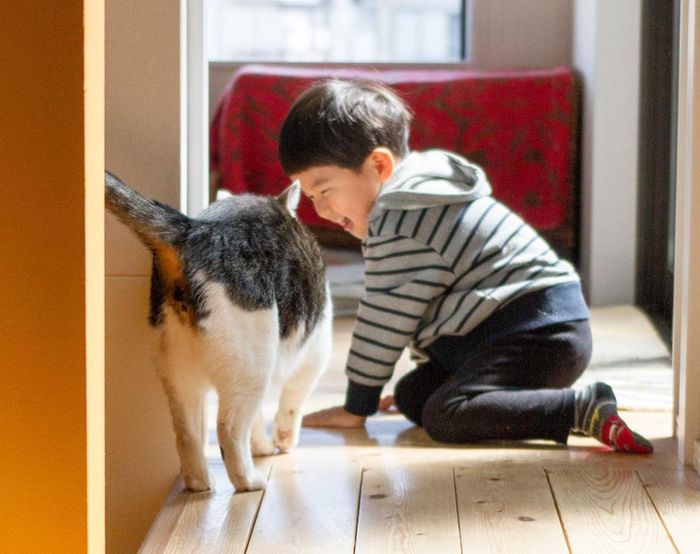 赤ちゃんのときから、ずっと一緒。猫のマイロとぼくの成長記録。の画像23
