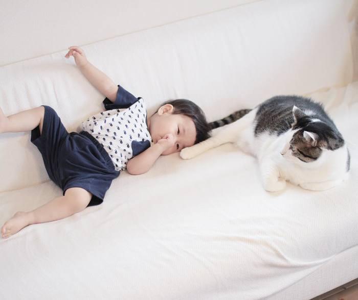 赤ちゃんのときから、ずっと一緒。猫のマイロとぼくの成長記録。の画像7