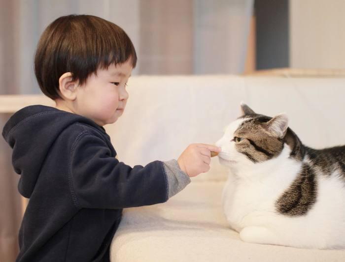 赤ちゃんのときから、ずっと一緒。猫のマイロとぼくの成長記録。の画像9