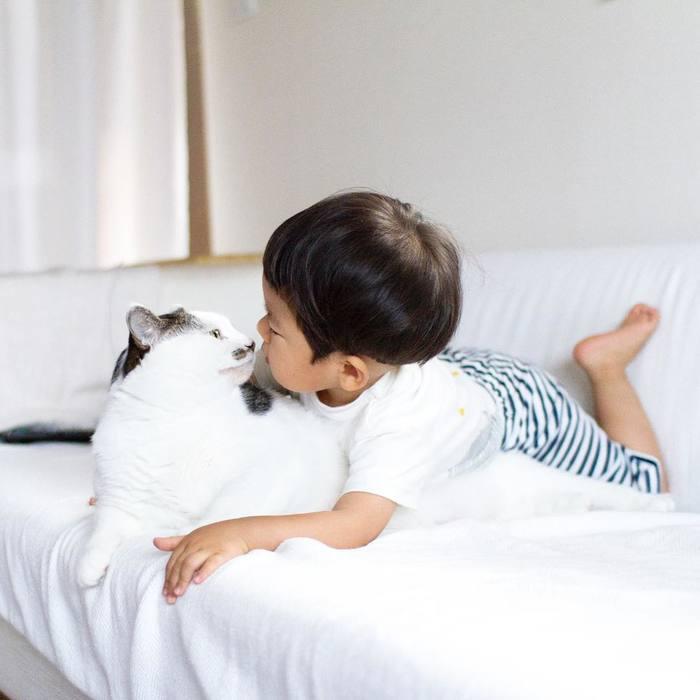 赤ちゃんのときから、ずっと一緒。猫のマイロとぼくの成長記録。の画像15