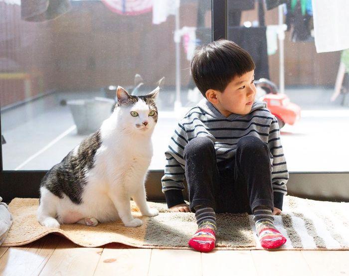 赤ちゃんのときから、ずっと一緒。猫のマイロとぼくの成長記録。の画像25