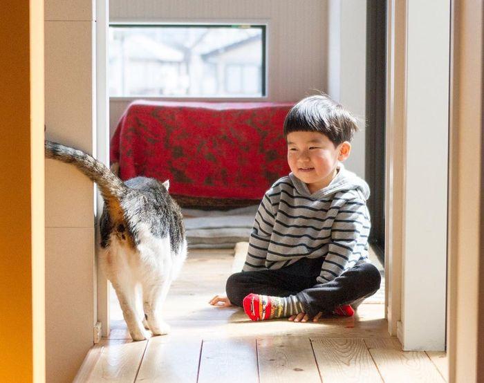 赤ちゃんのときから、ずっと一緒。猫のマイロとぼくの成長記録。の画像21