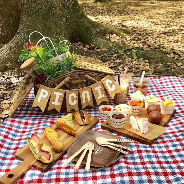 天気の良い日は公園へ行こう!簡単&楽しいピクニックアイデアの画像1
