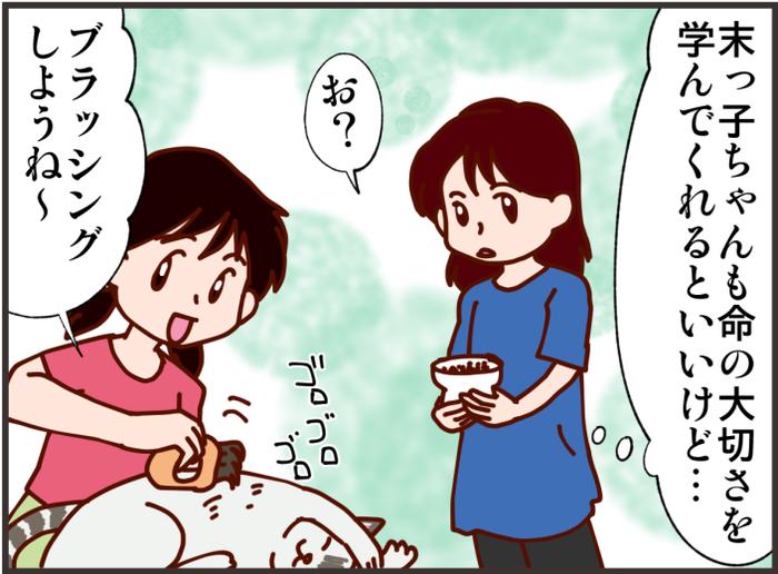 きっかけはペット!末っ子がワガママを卒業し「お世話する」に目覚めたワケの画像5