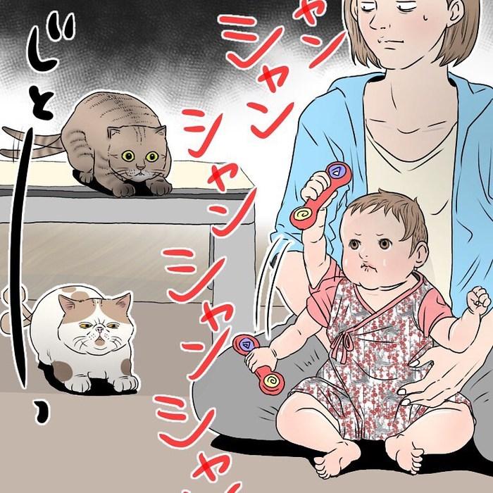 香港在住マダム、優雅とはかけ離れた猫と赤ちゃんとの暮らし(笑)の画像35