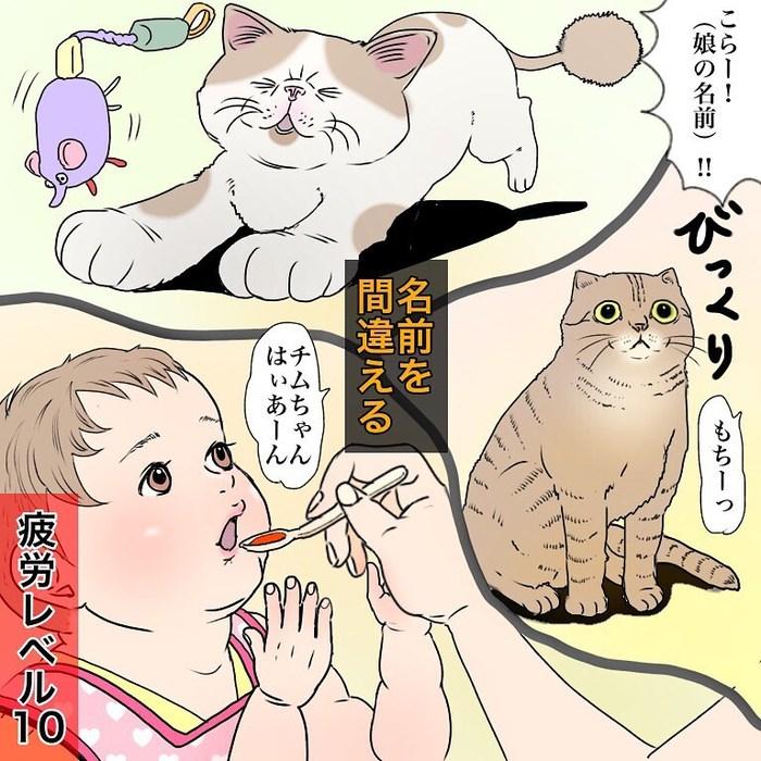 香港在住マダム、優雅とはかけ離れた猫と赤ちゃんとの暮らし(笑)の画像31