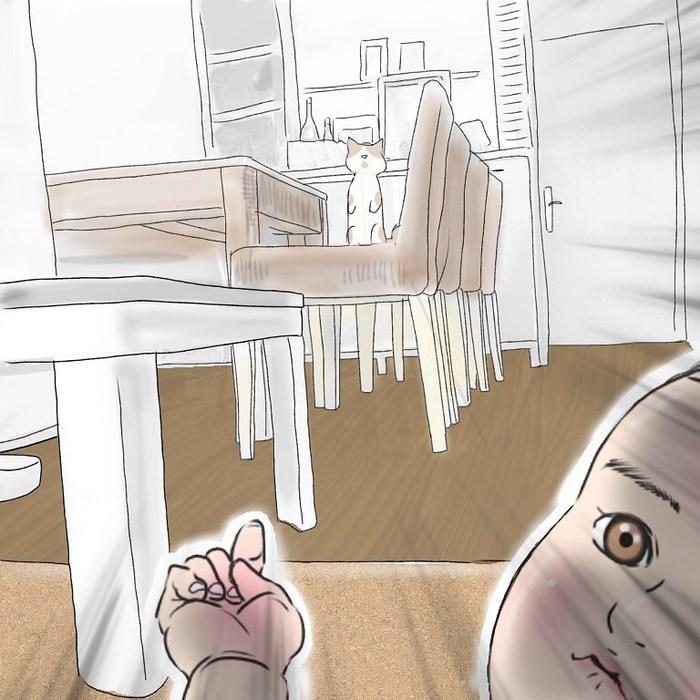 香港在住マダム、優雅とはかけ離れた猫と赤ちゃんとの暮らし(笑)の画像23